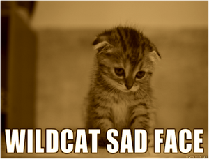 wildcat-sad-face